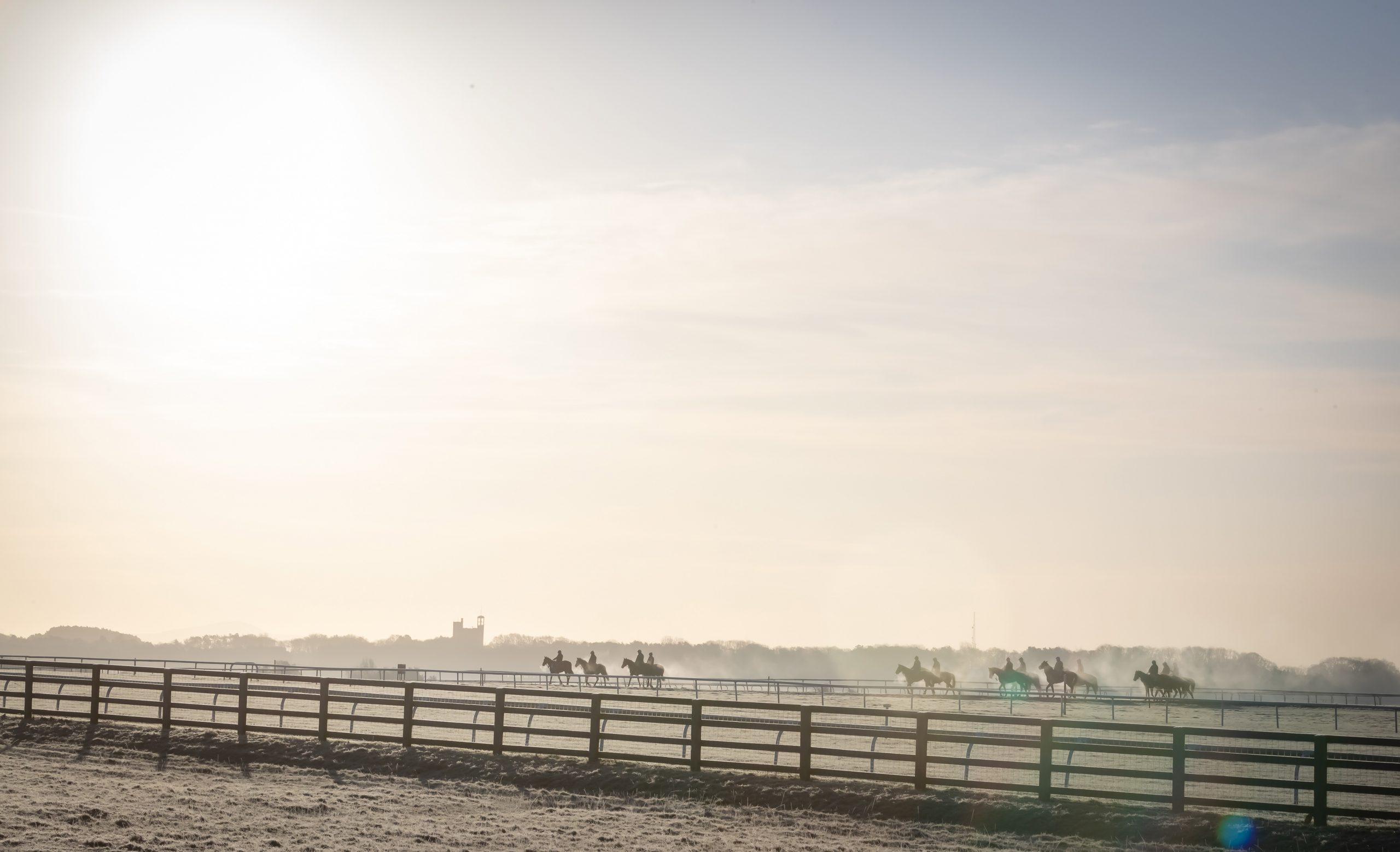 Curragh Racecourse24_